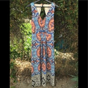 Gorgeous Maxi Silk Dress by Anthropology Maeve